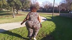 Ms. Hollywood Texas